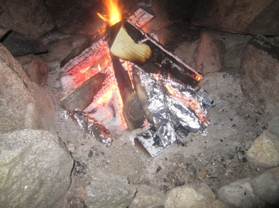 Bananas in the Campfire