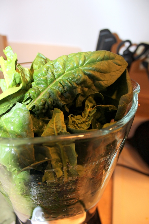 Spinach in Blender
