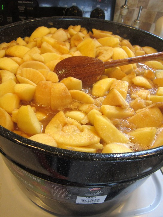 Apples in the Pot