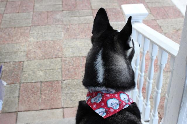 Radar on Porch