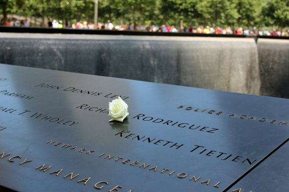 9/11 Memorial Birthday Rose