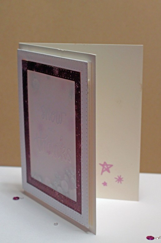 SSS January Card Kit Shaker Card